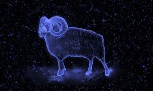 Что принесет год Крысы каждому из знаков зодиака?